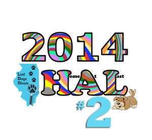 HAL Allyear14_2