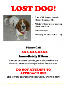 Flyers | Lost Dogs Illinois