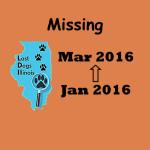 cvr_Missing Dark Orange