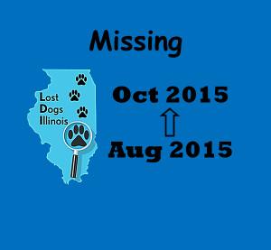 cvr_Missing Med Blue