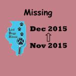 cvr_Missing Rose