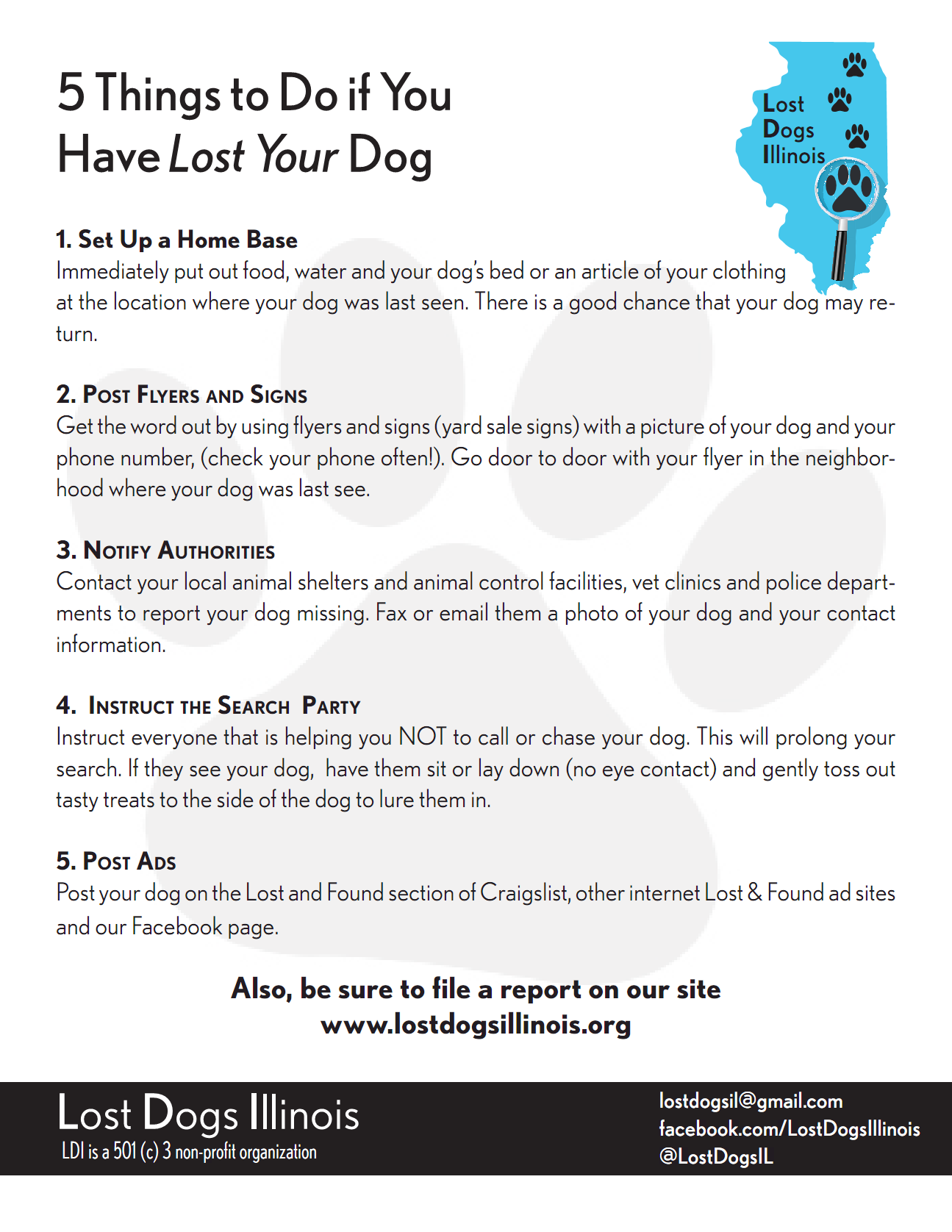 5 Thingslost2013  Lost Dog Flyer Examples