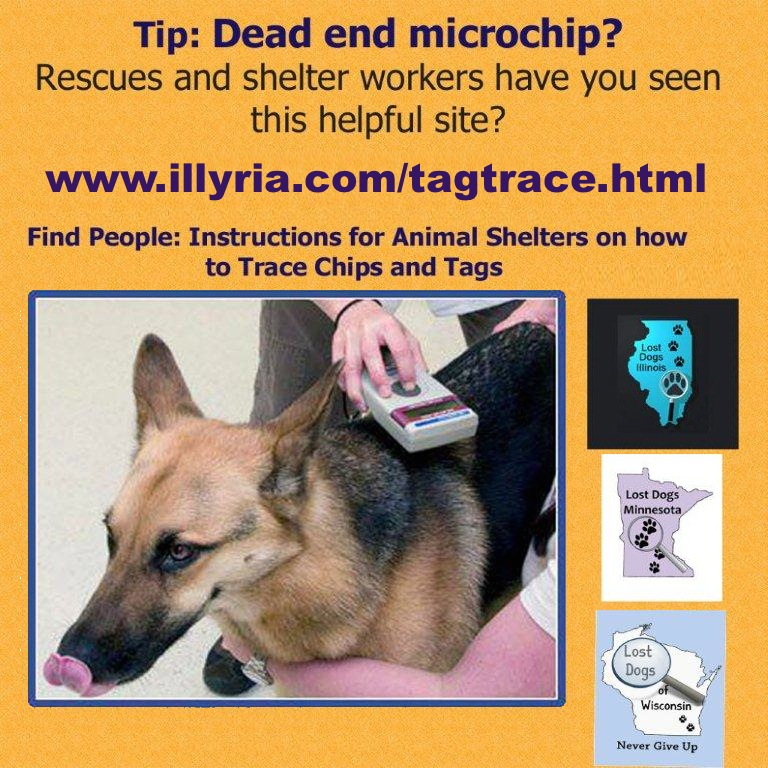 Dead end microchip