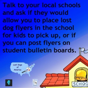 Lost Dog Flyering at Local Schools