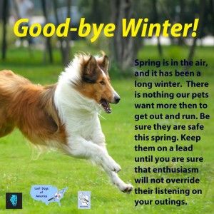 Good-Bye Winter