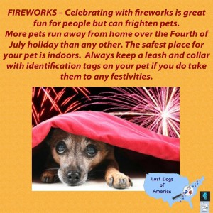Fireworks and Dogs