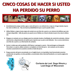 LDI+W-Spanish 5Things LOST Flyer