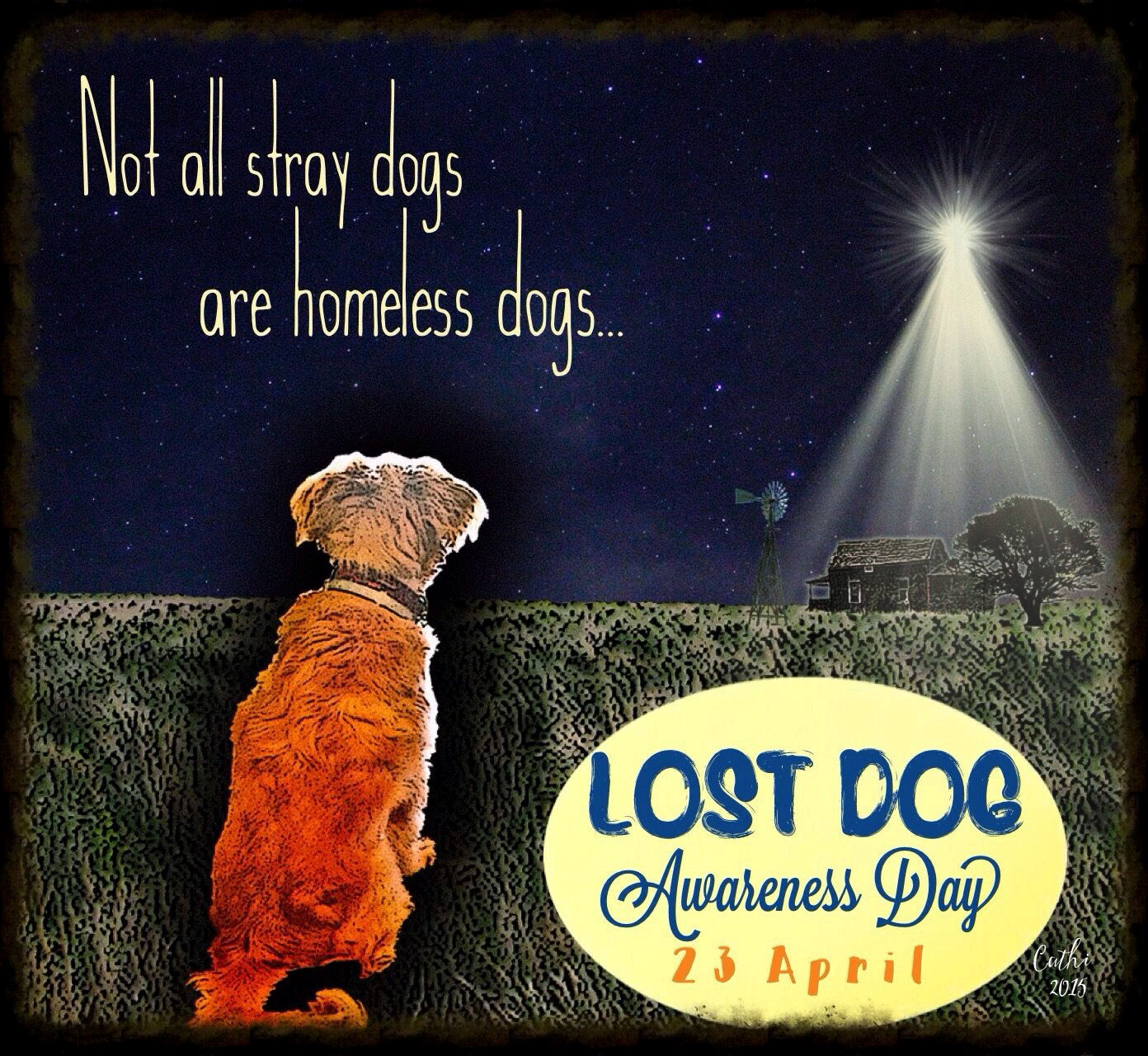 National Lost Dog Awareness Day | Lost Dogs Illinois